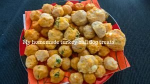 my turkey ball homemade dog treats