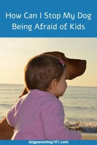 How Can I Stop My Dog Being Afraid of Kids