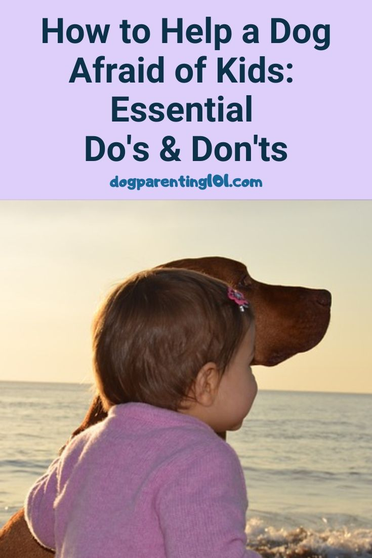 How to Help a Dog Afraid of Kids The Essential Do's and Don'ts