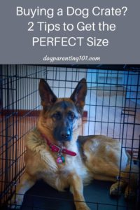 Buying a dog crate? 2 tips to get the perfect size