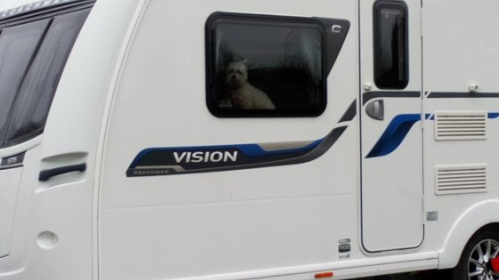 What should I pack for a caravan holiday with the dog