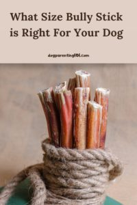 What Size Bully Stick is Right For Your Dog