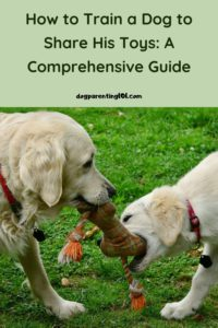 How to Train a Dog to Share His Toys A Comprehensive Guide