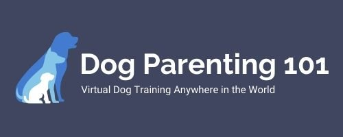 Dog Parenting 101 Virtual Dog Training Online Dog Trainer