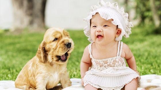 How to help your dog adjust to a new baby